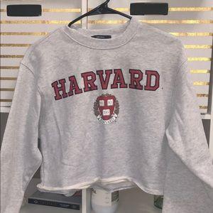 BNWOT Harvard cropped Crewneck sweater